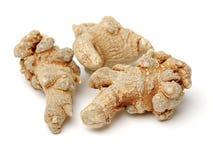 Κινεζική παραδοσιακή ρίζα χορταριών Chinses Angelica Angelica ιατρικής Στοκ Εικόνα