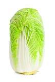 κινεζική σαλάτα λάχανων Στοκ φωτογραφία με δικαίωμα ελεύθερης χρήσης
