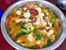 Κινεζική σούπα ψαριών με τα πράσινα λαχανικά, το καυτά πιπέρι τσίλι και το σουσάμι στοκ εικόνα