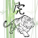 κινεζική τίγρη Στοκ φωτογραφία με δικαίωμα ελεύθερης χρήσης