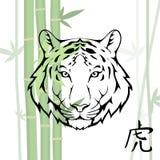 κινεζική τίγρη Στοκ εικόνες με δικαίωμα ελεύθερης χρήσης