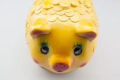 Κινεζική τράπεζα Piggy που απομονώνεται Στοκ Φωτογραφίες