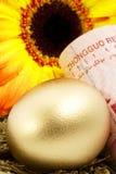 κινεζική φωλιά αυγών Στοκ Εικόνες