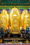 κινεζική χρυσή παράδοση ε Στοκ Εικόνα