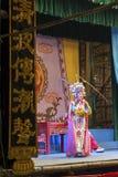 Κινεζική όπερα Στοκ εικόνες με δικαίωμα ελεύθερης χρήσης