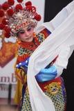 κινεζική όπερα Στοκ εικόνα με δικαίωμα ελεύθερης χρήσης