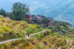 Κινεζικοί τομείς χωριών και ρυζιού στο νεφελώδη καιρό Στοκ Εικόνες