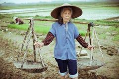 Κινεζικός αγρότης Στοκ Εικόνες
