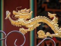 κινεζικός δράκος πραγματικός στοκ εικόνα