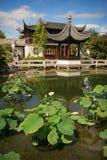 κινεζικός κήπος Στοκ Φωτογραφία