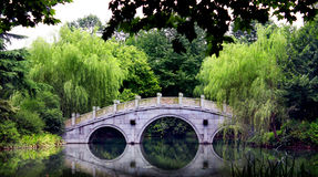 κινεζικός κήπος Στοκ εικόνα με δικαίωμα ελεύθερης χρήσης