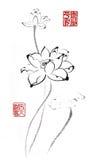 Κινεζικός παραδοσιακός διακεκριμένος πανέμορφος διακοσμητικός ζωγραφισμένος στο χέρι κρίνος μελάνι-νερού Στοκ εικόνες με δικαίωμα ελεύθερης χρήσης