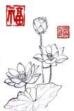 Κινεζικός παραδοσιακός διακεκριμένος πανέμορφος διακοσμητικός ζωγραφισμένος στο χέρι κρίνος μελάνι-νερού ελεύθερη απεικόνιση δικαιώματος