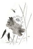 Κινεζικός παραδοσιακός διακεκριμένος πανέμορφος διακοσμητικός ζωγραφισμένος στο χέρι κρίνος μελάνι-νερού Στοκ φωτογραφία με δικαίωμα ελεύθερης χρήσης