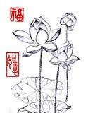 Κινεζικός παραδοσιακός διακεκριμένος πανέμορφος διακοσμητικός ζωγραφισμένος στο χέρι κρίνος μελάνι-νερού απεικόνιση αποθεμάτων