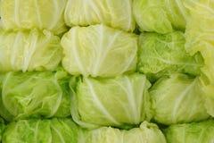 Κινεζικό λάχανο ατμού Στοκ Εικόνα