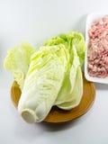 Κινεζικό λάχανο στο πιάτο με το κομματιασμένο χοιρινό κρέας Στοκ φωτογραφία με δικαίωμα ελεύθερης χρήσης