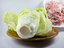 Κινεζικό λάχανο στο πιάτο με το κομματιασμένο χοιρινό κρέας Στοκ Φωτογραφία