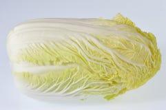 Κινεζικό λάχανο Στοκ εικόνα με δικαίωμα ελεύθερης χρήσης
