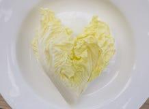 Κινεζικό λάχανο Στοκ Εικόνες