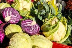 κινεζικό λαχανικό αγοράς Στοκ φωτογραφίες με δικαίωμα ελεύθερης χρήσης