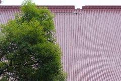 Κινεζικό βερνικωμένο κεραμίδι Στοκ εικόνα με δικαίωμα ελεύθερης χρήσης