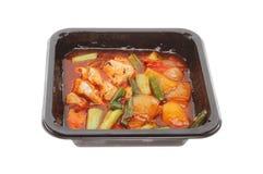 Κινεζικό γεύμα μικροκυμάτων Στοκ φωτογραφία με δικαίωμα ελεύθερης χρήσης