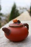 κινεζικό καθορισμένο τσάι Στοκ εικόνα με δικαίωμα ελεύθερης χρήσης