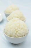 κινεζικό μαγειρευμένο ρύ&z στοκ φωτογραφία με δικαίωμα ελεύθερης χρήσης