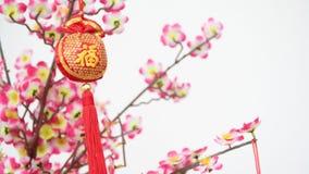 κινεζικό νέο έτος διακοσμήσεων απόθεμα βίντεο