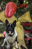 2018 κινεζικό νέο έτος του σκυλιού Στοκ Εικόνες