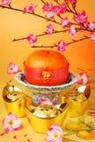 κινεζικό νέο έτος Στοκ Εικόνα