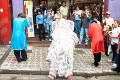 κινεζικό νέο έτος Στοκ Εικόνες