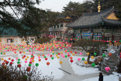 κινεζικό νέο έτος Στοκ Φωτογραφία