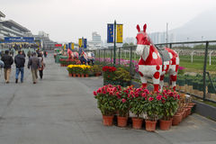 κινεζικό νέο raceday έτος στοκ εικόνες