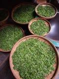 Κινεζικό πράσινο τσάι σε Guilin Κίνα Στοκ Εικόνες