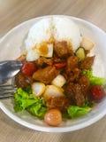 Κινεζικό ρύζι τηγανίζω-χοιρινού κρέατος στοκ εικόνες
