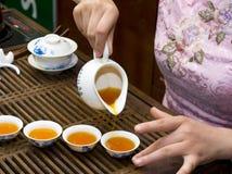 κινεζικό τσάι καλλιέργε&iota Στοκ φωτογραφία με δικαίωμα ελεύθερης χρήσης