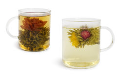κινεζικό τσάι λουλουδ&iot Στοκ Φωτογραφία