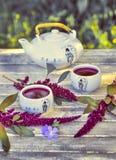 Κινεζικό τσάι πορσελάνης που τίθεται με το κόκκινο τσάι σε έναν ξύλινο Στοκ Φωτογραφίες