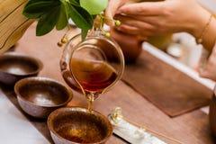 κινεζικό τσάι Στοκ Εικόνα