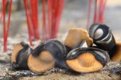 Κινεζικό χρυσός-διαμορφωμένο θυμίαμα καψίματος Στοκ Εικόνες