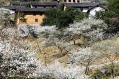 κινεζικό χωριό στοκ φωτογραφίες