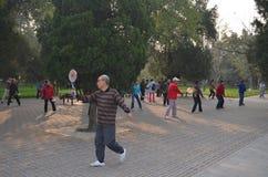 Κινεζικό Chi εγκιβωτίζω-Tai Στοκ φωτογραφία με δικαίωμα ελεύθερης χρήσης