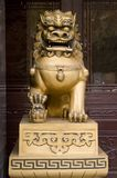κινεζικό dragoon Στοκ Φωτογραφίες