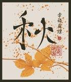 Κινεζικό hieroglyph φθινόπωρο, ευτυχία, αλήθεια διανυσματική απεικόνιση
