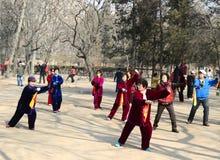 Κινεζικό Taiji Στοκ φωτογραφία με δικαίωμα ελεύθερης χρήσης