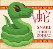 Κινεζικό Zodiac ζώο: Πράσινο φίδι που κουλουριάζονται, διανυσματική απεικόνιση διανυσματική απεικόνιση