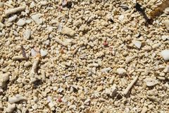 Κινηματογράφηση σε πρώτο πλάνο άμμου παραλιών κοραλλιών για το υπόβαθρο Τροπική φωτογραφία παραλιών Στοκ εικόνα με δικαίωμα ελεύθερης χρήσης