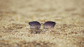 Κινηματογράφηση σε πρώτο πλάνο, γυαλιά ηλίου που βρίσκεται στην παραλία από τα κοχύλια απόθεμα βίντεο